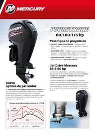 Fourstroke 80/100/115 hp
