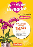 Ofertas de Jardiland, Feliz día de la madre