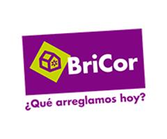 Catálogos de <span>Bricor</span>